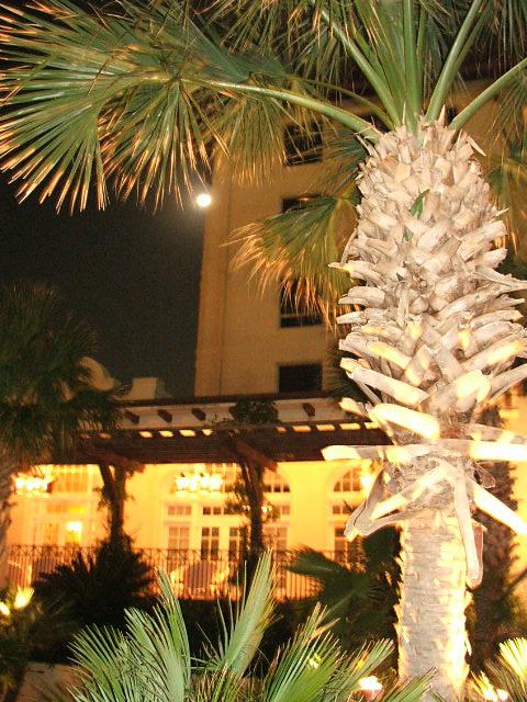 The Galvez Hotel Photographs